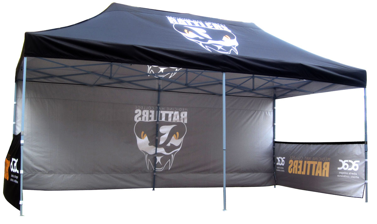 Custom Large 10x20 Canopy Tent with Walls Example
